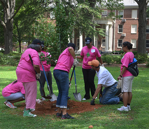 Members Alpha Kappa Alpha Sorority Incorporated, Tree Campus USA, Toyota, the Arbor Day Foundation, Trees Charlotte, the North Carolina Forest Service and Friends of the Urban Forest to plant 35 trees on campus.